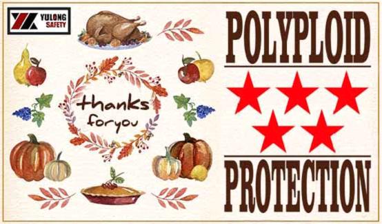 Yulongs big reward in Thanksgiving day