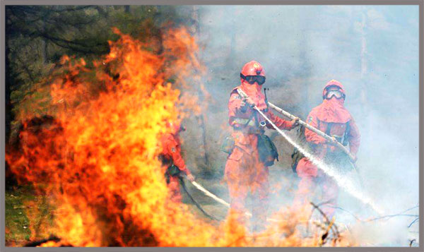 Inner Mongolia Suffer From Three Forest Fire Succesively